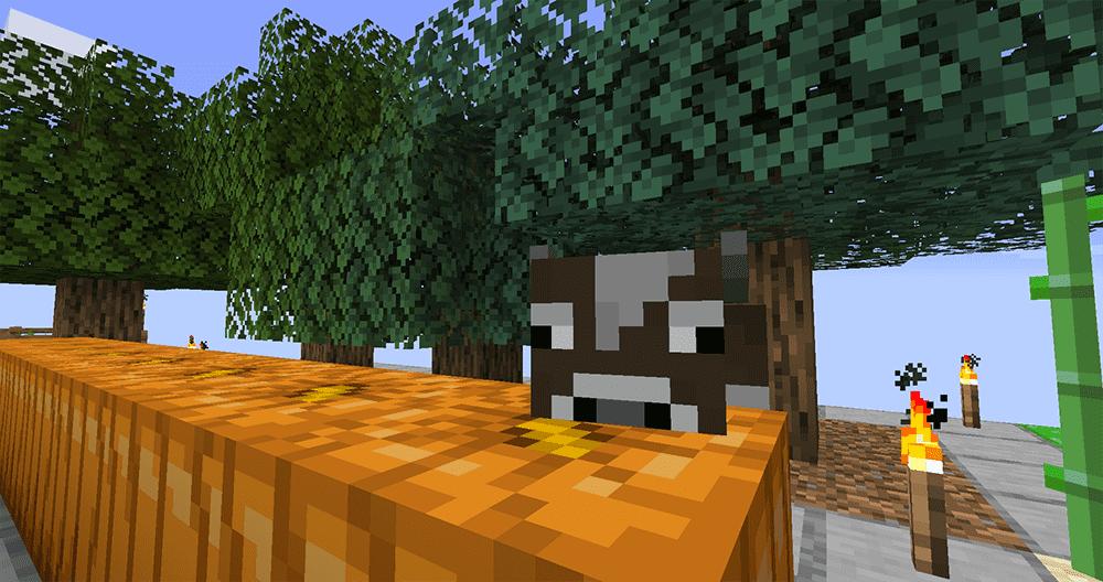 Minecraft SkyBlock Tree Farm