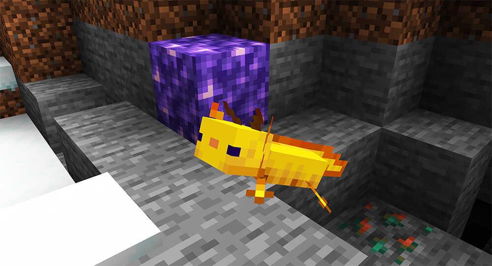 Minecraft 1.17 Update: Axolotl