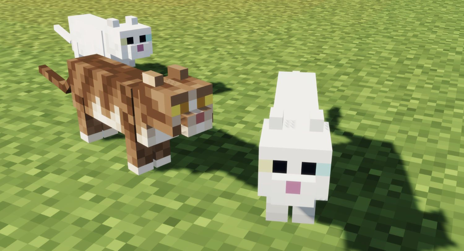 Minecraft Servers With Cats